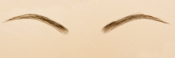 EYEBROWS3