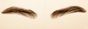 EYEBROWS_M1